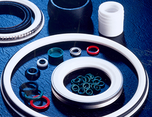 Oilfield seals or Oil seals